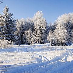 """фото """"Мороз  и  солнце ..."""""""