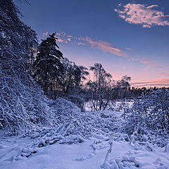"photo ""Winter twilight"""