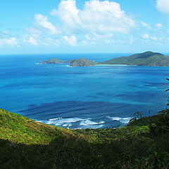 """фото """"Tortola"""""""