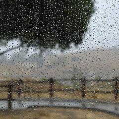 """photo """"Дождит."""""""