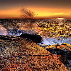 "photo ""Winterlight by the Coast"""