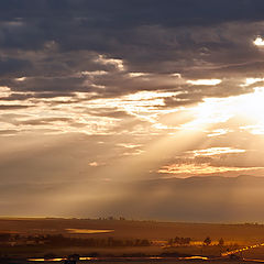 "photo ""gold morning"""