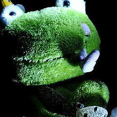 "фото ""froggy"""