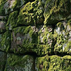 """photo """"Ancient stones"""""""