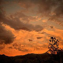 "фото ""Red sky"""