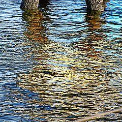 "фото ""Water Color"""