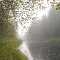 """фото """"Утренний туман на реке"""""""