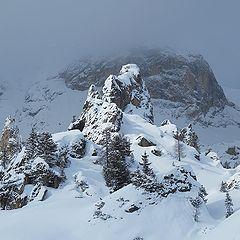 "photo ""Alpine sketches"""