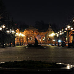 """фото """"Мариинский парк ночью"""""""