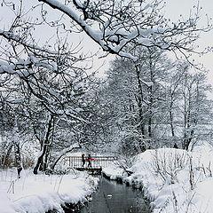 """фото """"После снегопада"""""""
