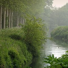 """photo """"the river"""""""