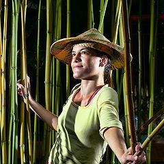 "photo ""bamboo girl"""