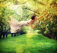 """фото """"apple tree"""""""