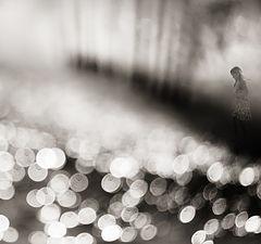 """photo """"fairy tale"""""""