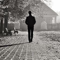 """фото """"Утренняя прогулка"""""""