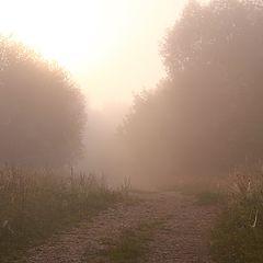 """фото """"В тумане утра"""""""