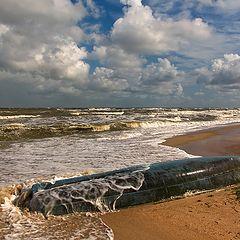 """фото """"Море волнуется раз..."""""""