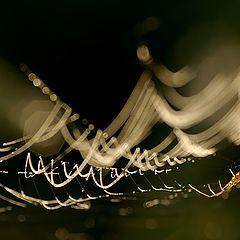 """photo """"Illumination"""""""