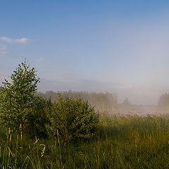 "photo ""A bit of fog"""