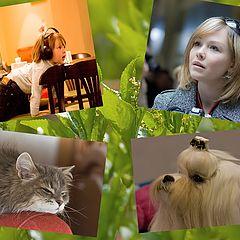 "photo ""Like? Association. People and animals ..."""