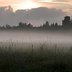 "photo ""Summer fog"""