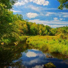 "фото ""Beaver country"""