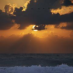 "photo ""sunset today"""