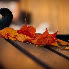"""фотоальбом """"Осень"""""""