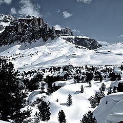 """фото """"Dolomiti"""""""