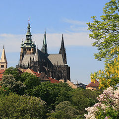 "photo ""Prague Castle. Spring."""