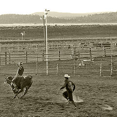 """photo """"Rodeo at sunset"""""""