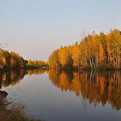 """фото """"В багрец и в золото одетые леса"""""""
