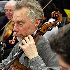 "photo ""The Cellist"""