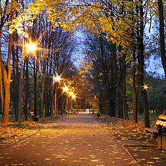 """фото """"В Тропаревском парке в сумерки"""""""