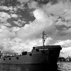 """фото """"Port  of SANTOS"""""""