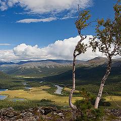 """фото """"Лето в горах.Север."""""""