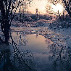 """фото """"secrets of winter"""""""