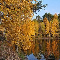 """фото """"Прошедшая осень"""""""