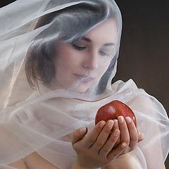 """фото """"про яблоко"""""""