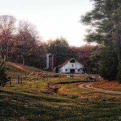 """фото """"Barn at Biltmore Estate"""""""
