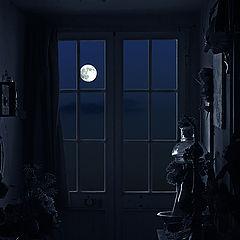 "фото ""Moon light"""