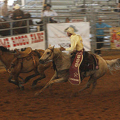 """фото """"Rodeo"""""""