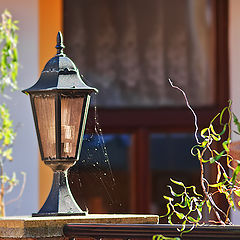 "photo ""The story of the lamp and ..."""
