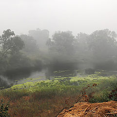 "photo ""Covered with fog. Panorama."""