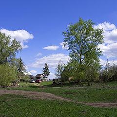 "фото ""Хорошо летом в деревне..."""