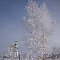 "фото ""Декабрь"""