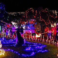 "photo ""Admiring my neighbours Xmas Lights."""