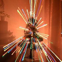 """фото """"Переносимся в Новый год"""""""