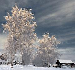 "фото ""Новогодние линии мороза"""