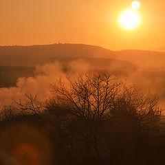 """фото """"Утро в тумане"""""""
